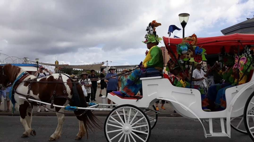 Carnival Season 2020: Horse & Carriage Parade Curacao Carnival 2020.